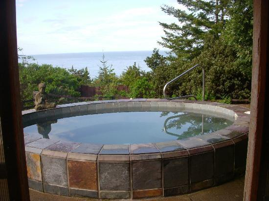 WildSpring Guest Habitat: hot tub overlooking ocean
