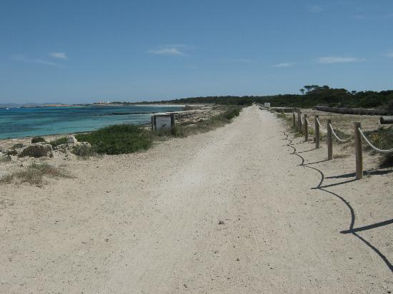 from the port to playa de ses illetes (only for bikes and pedestrians)