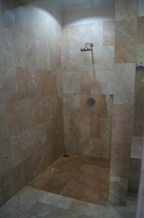 Indira Cottage: big shower