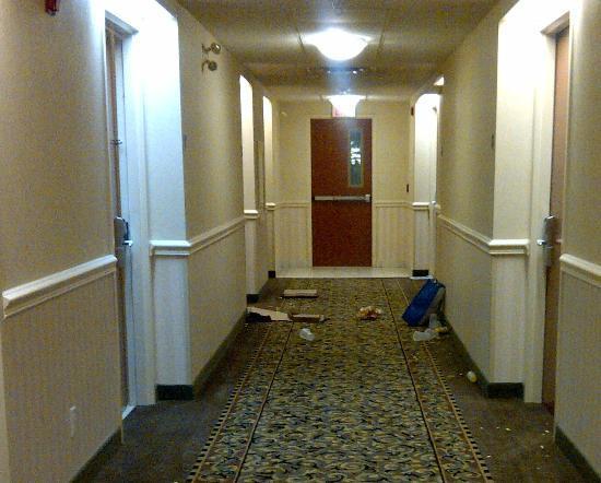 Holiday Inn Express Barrie: hallway mess