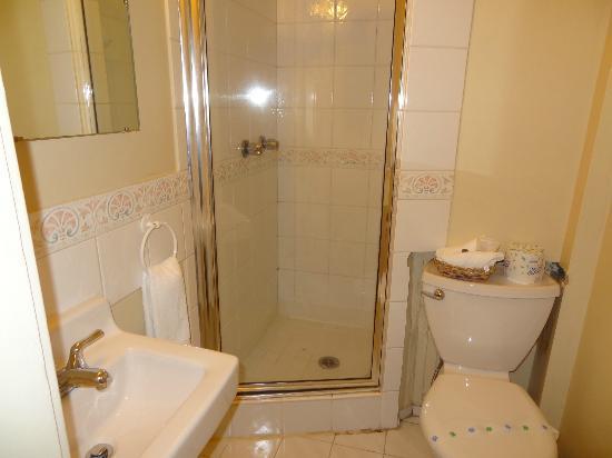 Buchan Hotel : private bathroom, pretty mouldy, but clean