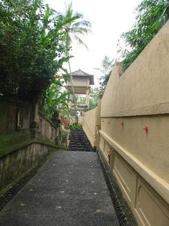 Tanah Merah Art Resort: Pathway from the studio landing leading to the pool
