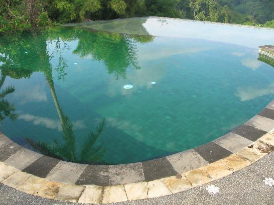 Tanah Merah Art Resort: the pool with green tiles