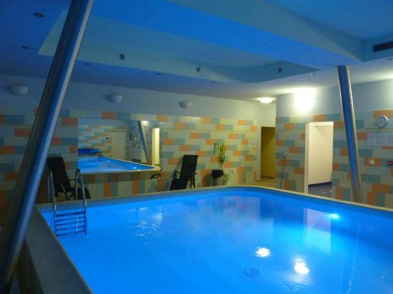 Castle Residence Praha: Swimming Pool