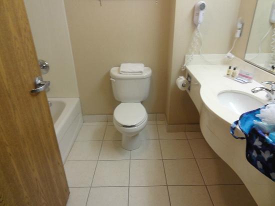 Humphry Inn & Suites: the bathroom