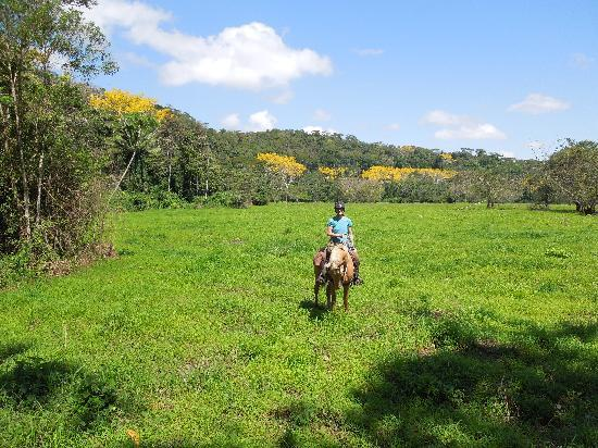 Mountain Equestrian Trails: The Vega