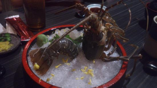 Nara Japanese Restaurant Pte Ltd : Lobster Sashimi