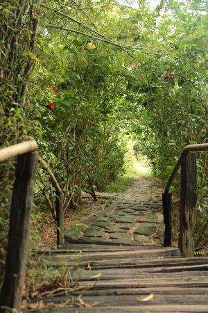 Freedomland Phu Quoc Resort: I corridoi di Freedomland