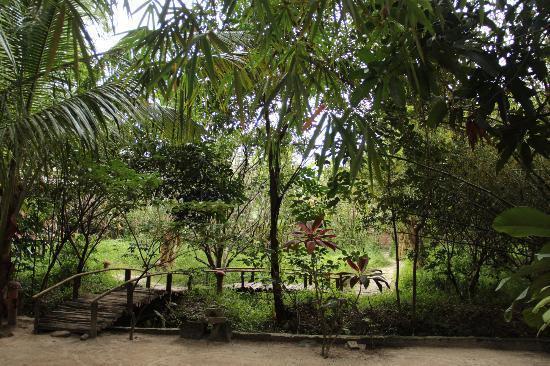 Freedomland Phu Quoc Resort: Il tetto della hall di Freedomland...
