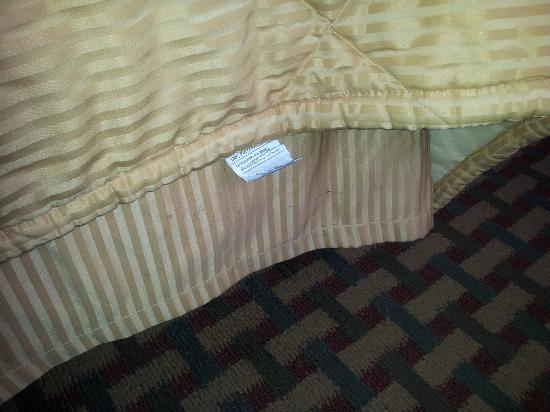 Comfort Inn Humboldt Bay: the bed skirt