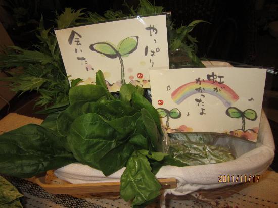 Shofuen: ここの絵葉書と野菜