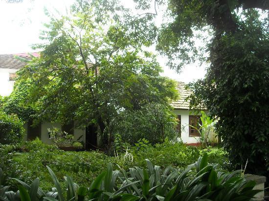 Old Harbour Hotel: esterno, giardino