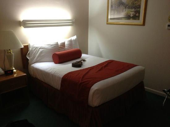 University Inn Academic Suites: clean and comfy bedrooms