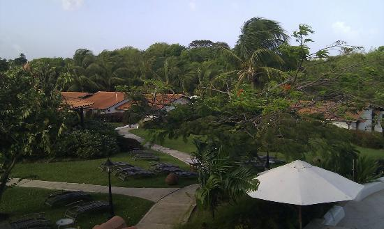 Sugar Cane Club Hotel & Spa: grounds