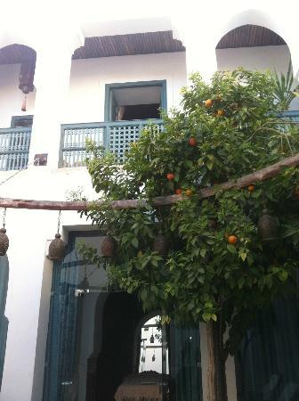Ryad Dyor: veranda