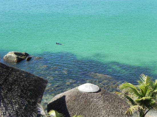Bombinhas Tourist Apart Hotel: Snorkel y buceo