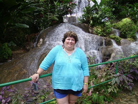 Shaw Park Gardens & Waterfalls: the falls