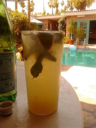 Villa Rosa Inn: Mojito's poolside