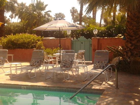 Villa Rosa Inn: Poolside lounging!