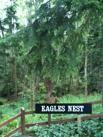 Eagles Nest Inn Bed and Breakfast: Approach on Saratoga Rd.