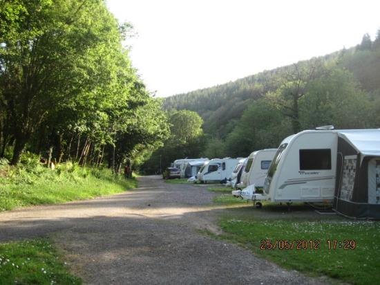 Hidden Valley Touring & Camping Park: View from our pitch. Woodland walk up to the right.