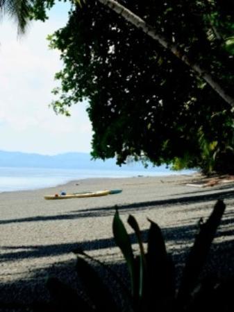 Aventuras Tropicales Golfo Dulce: siesta view