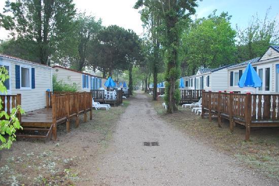 Camping Village Marina di Venezia: Avenue
