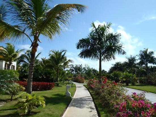 The Reserve at Paradisus Palma Real: Atravesando los jardines rumbo a la playa