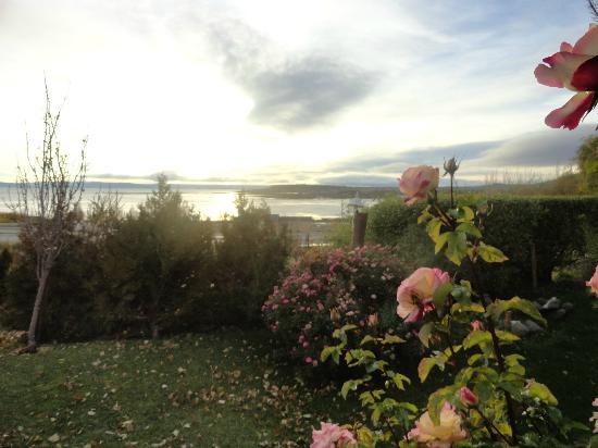 Cabanas Solares del Sur: jardín con rosas hermosas