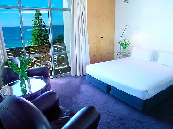 Dive Hotel: Premier Oceanview Room
