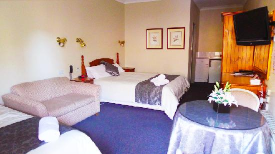 New England Motor Inn: Twin Room