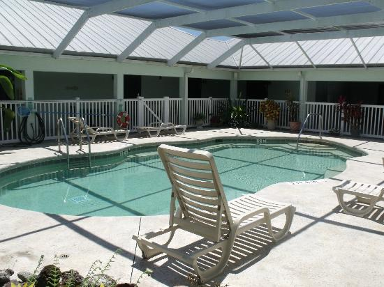Ivey House: Pool Area