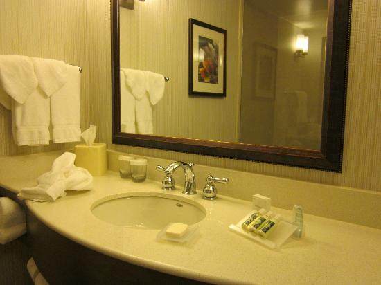 Hilton Garden Inn Devens Common: Bathroom