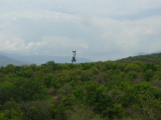 Chinnar Wildlife Sanctuary: The watch tower from the road