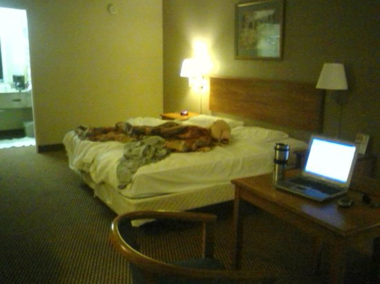 Super 8 Kingsport : My single King room