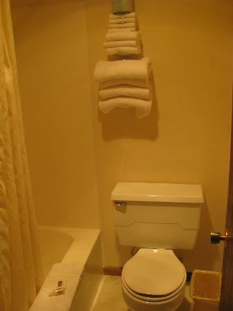 بدجيت هوست صنداونر موتور إن: Bathroom small, but adequate