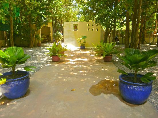 Samatika Villa Boutique: View of gardens, leading out to the entrance.