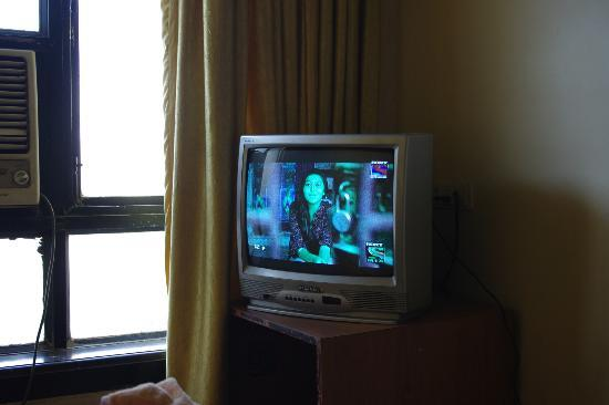 Hotel Metro International: Broken color TV