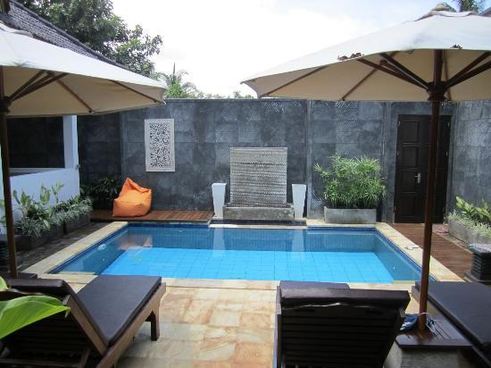 Villa Teman : Each of the 3 two bedroom villas has a private pool