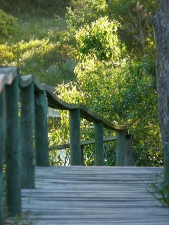 Oyster Bay Lodge: Wege zur Entspannung