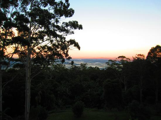 Avocado Sunset Bed and Breakfast: Sunrise from Daintree Balcony
