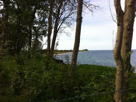 Waldpavillion Katharinenhof: Blick aufs Meer