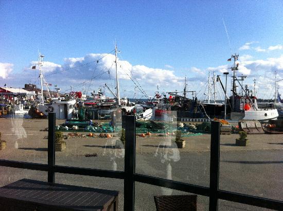 Restaurant Lotsenhus: Blick auf den Hafen