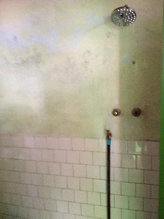 Four Sisters Inn: Old moldy walls and cold shower