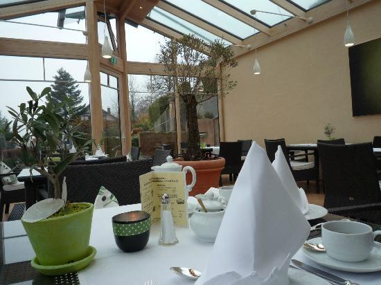 Hotel Ludinmuhle : Olivengarten