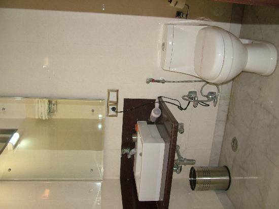 Treebo Citi International: Bathroom