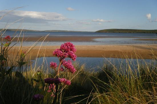 Gaultier lodge: Looking out to Wexford