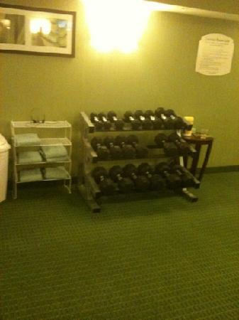 Fairfield Inn & Suites Plainville: gym - free weights