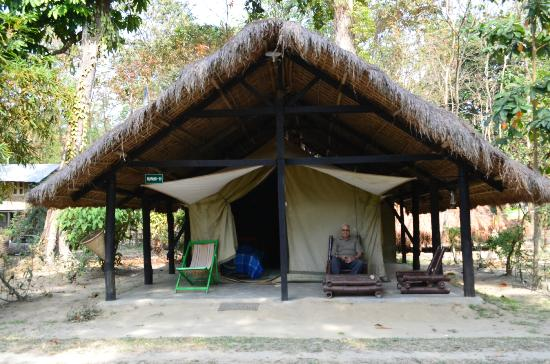 Nameri Eco Camp: The Tent we stayed in