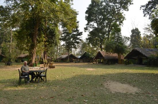 Nameri Eco Camp: The Eco Camp
